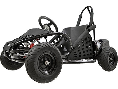 Best 48V Go Kart For Kids